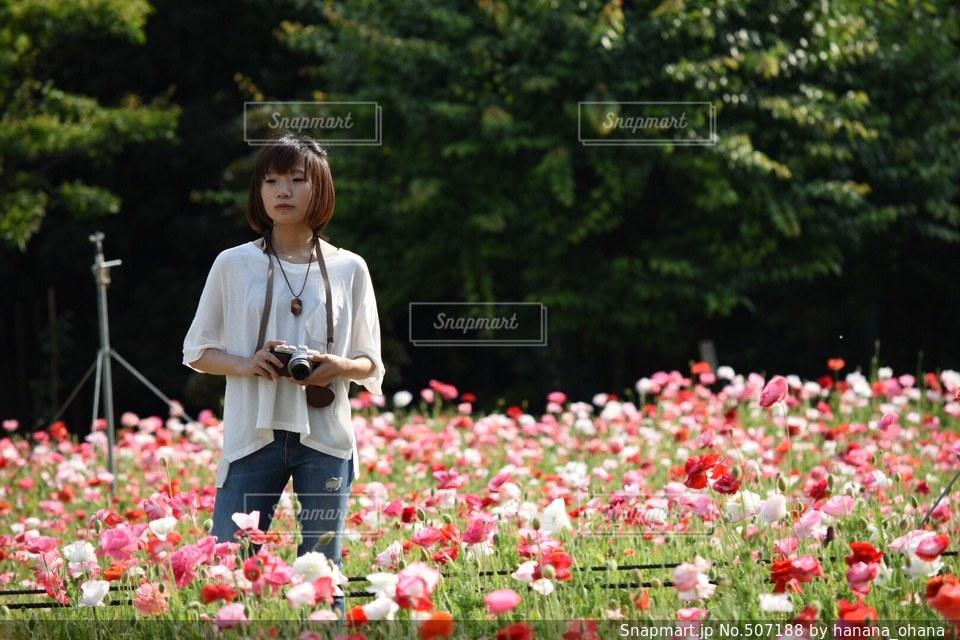No.507188 花