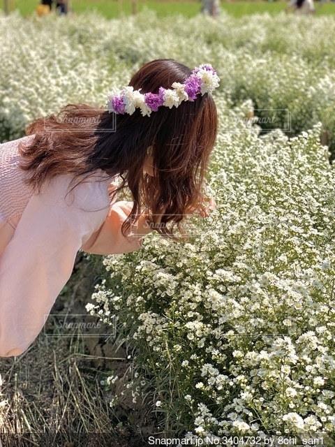 草の中に立っている人の写真・画像素材[3404732]