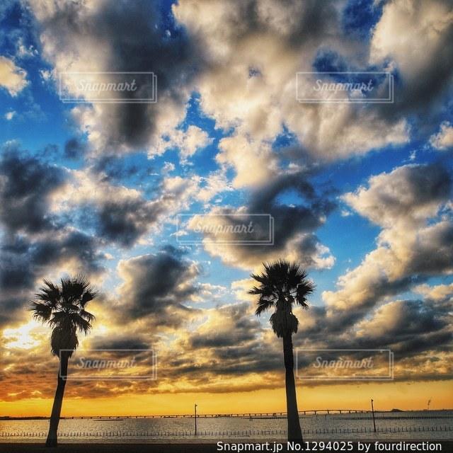 空には雲のグループの写真・画像素材[1294025]