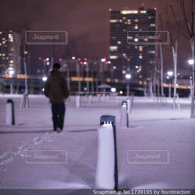 雪の東京の写真・画像素材[1739195]