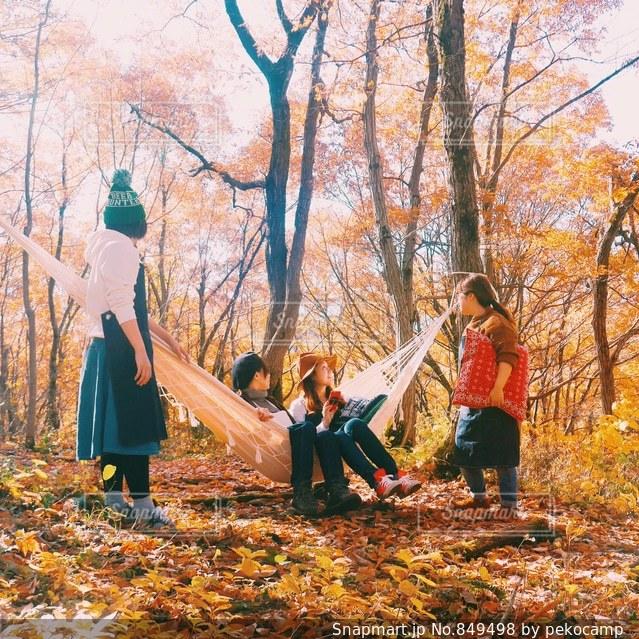 森の人々 のグループ - No.849498