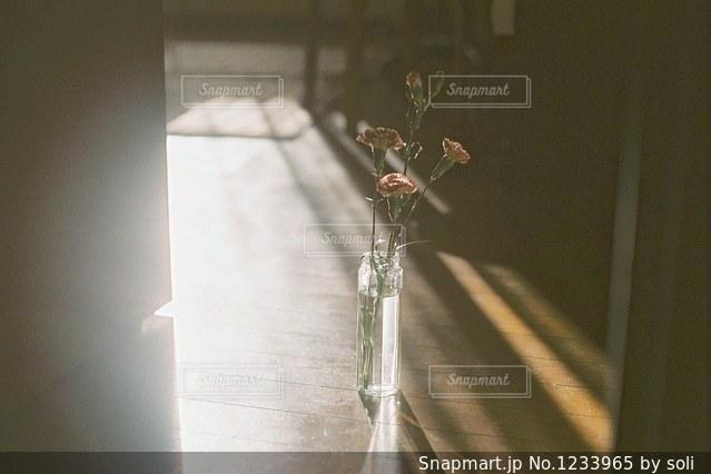 透明なガラスの花瓶に一輪の花の写真・画像素材[1233965]