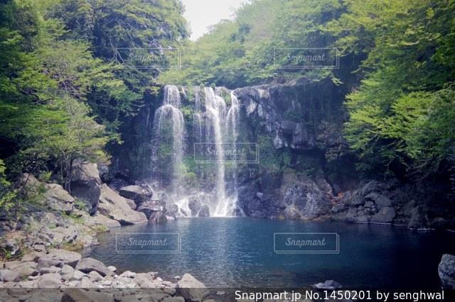 済州島の天帝淵瀑布 第2の滝の写真・画像素材[1450201]