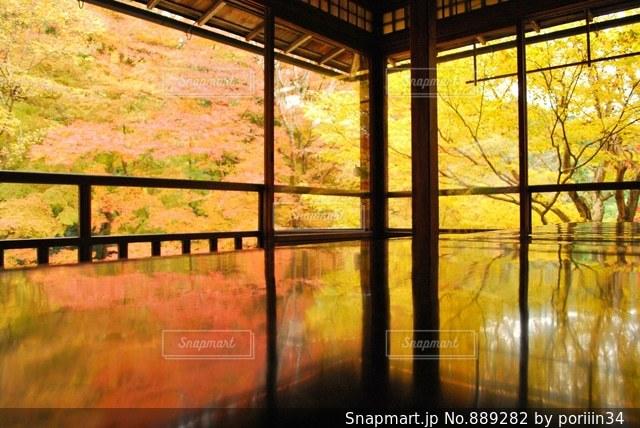 大きなガラス窓の写真・画像素材[889282]