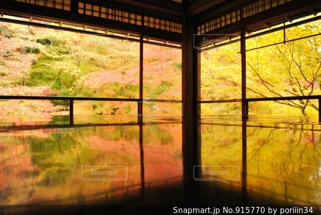 大きなガラス窓の写真・画像素材[915770]