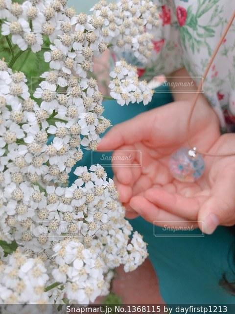 花を持っている手の写真・画像素材[1368115]