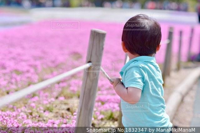 フェンスの前に立っている女の子の写真・画像素材[1832347]