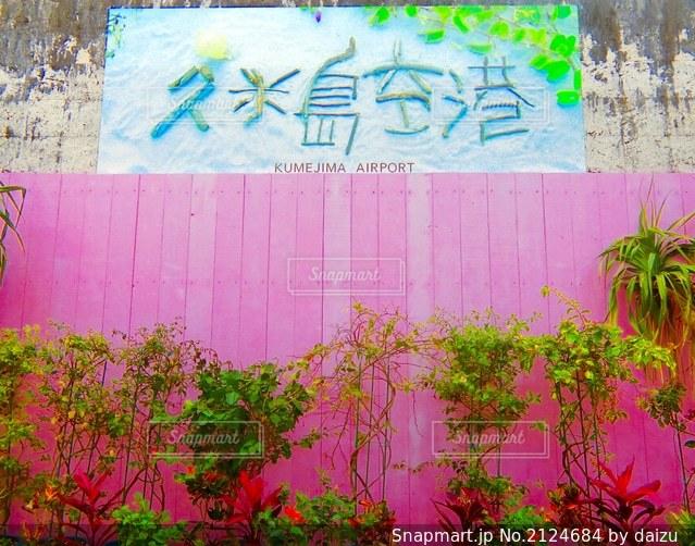 ファンシー久米島。の写真・画像素材[2124684]