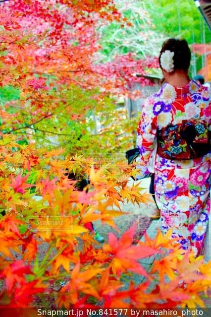 カラフルな花の前に立っている人の写真・画像素材[841577]