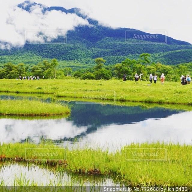 水の体の横に川に沿って歩く羊の群れの写真・画像素材[772688]