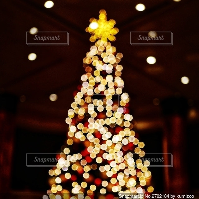 クリスマスツリーの写真・画像素材[2782184]