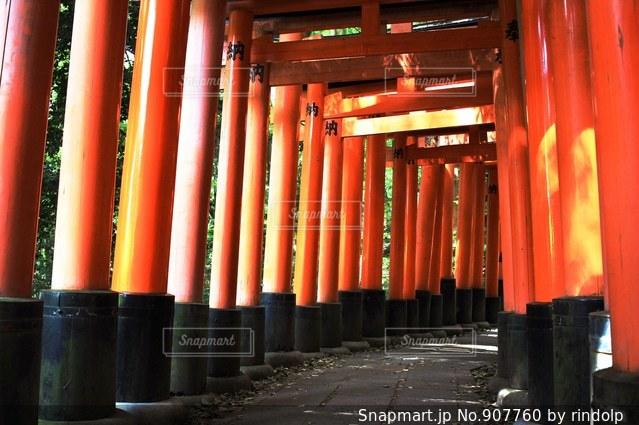 さまざまな色の行の写真・画像素材[907760]
