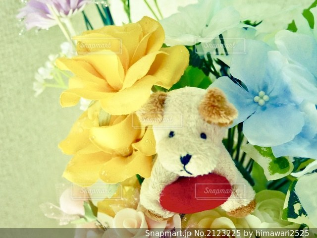 壁際にかわいい花🌸の写真・画像素材[2123225]