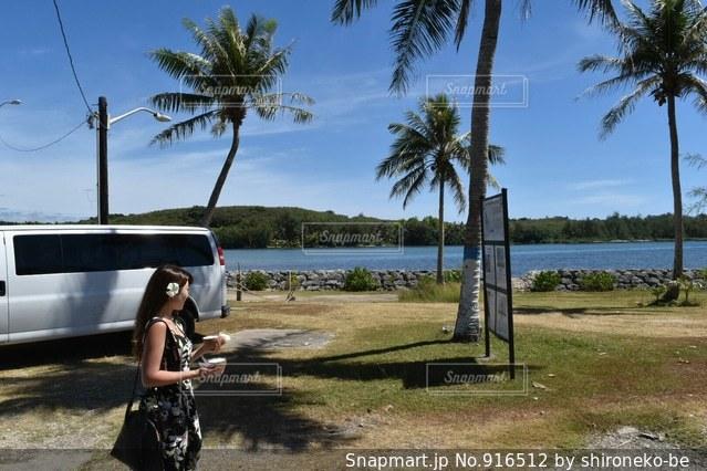 ビーチでヤシの木の横に立っている人の写真・画像素材[916512]