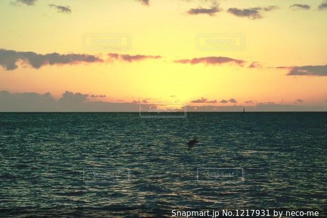 日没の写真・画像素材[1217931]
