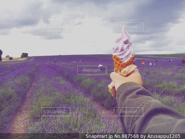 草の覆われてフィールド上に立っている人の写真・画像素材[887568]