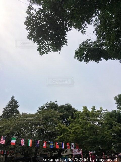 背景の木と電車の中で人々 のグループを追跡します。の写真・画像素材[782864]