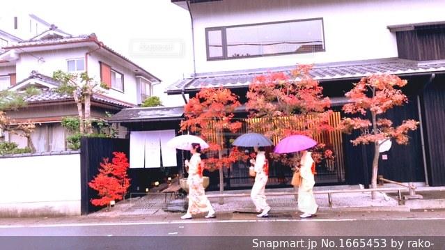 秋の嵐山を楽しむ女子達(*^ω^*)の写真・画像素材[1665453]
