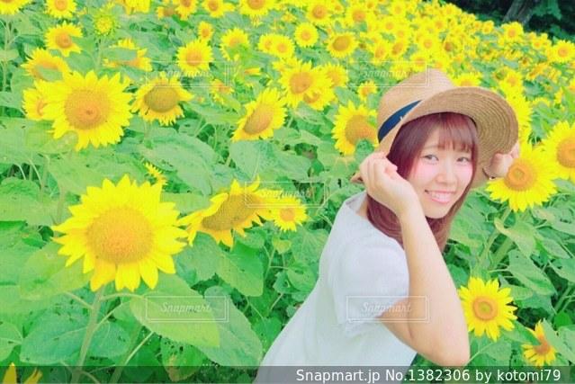 念願のひまわり畑の写真・画像素材[1382306]