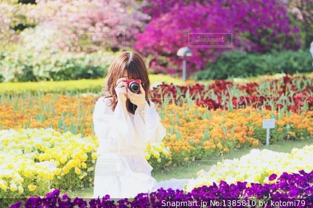 花畑の中での写真・画像素材[1385810]