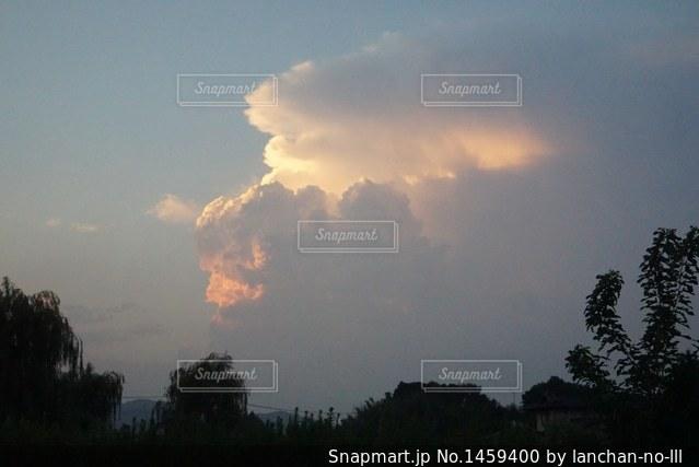 空を飛んでいるゴリラの写真・画像素材[1459400]