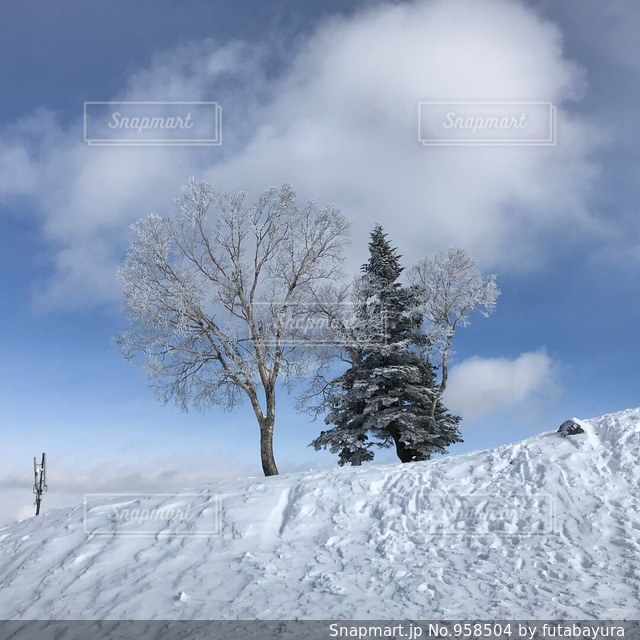 雪をスノーボードに乗る男覆われた斜面 - No.958504