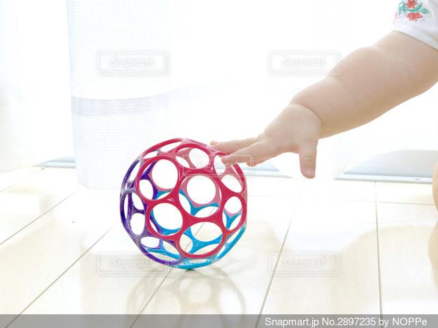 まてまてボールの写真・画像素材[2897235]