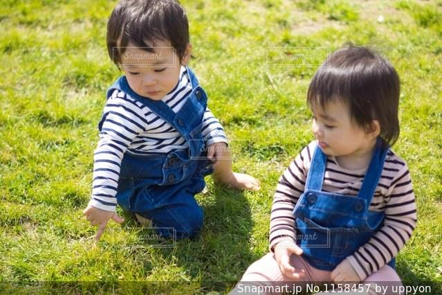芝生の上で♪の写真・画像素材[1158457]
