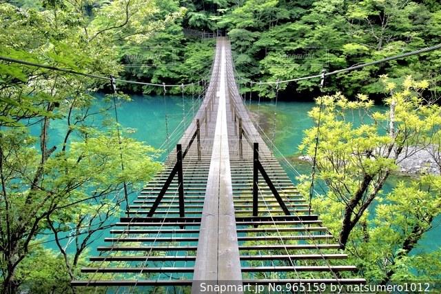 エコな生活への吊り橋の写真・画像素材[965159]