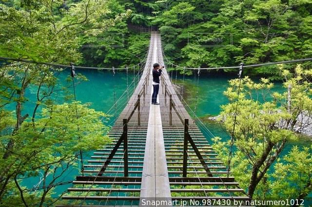 夢の吊り橋の写真・画像素材[987430]