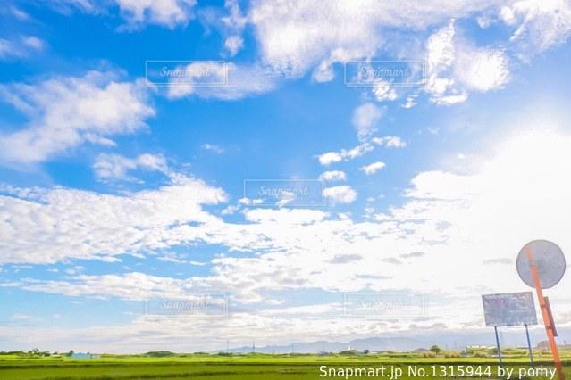青空と田んぼの写真・画像素材[1315944]
