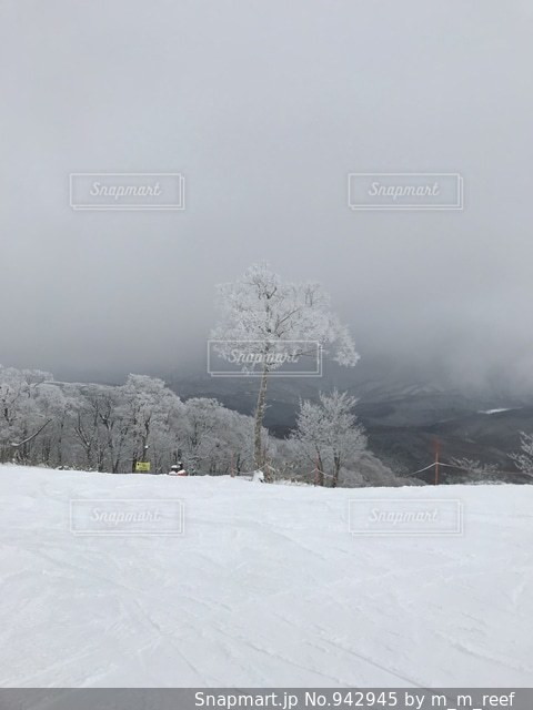 雪に覆われた斜面の写真・画像素材[942945]