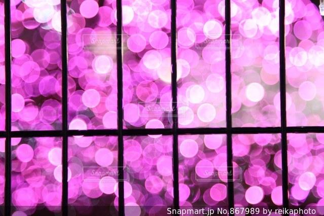 ピンクのイルミネーションの写真・画像素材[867989]
