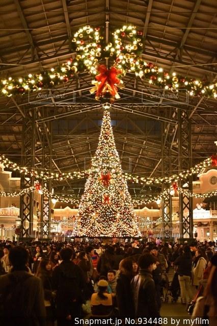 クリスマスディズニーの写真画像素材934488 Snapmartスナップ