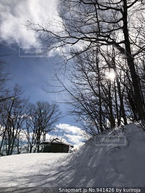 日差しを浴びるスキー場の斜面の写真・画像素材[941426]