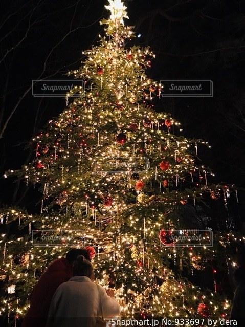クリスマス ツリーの写真・画像素材[933697]