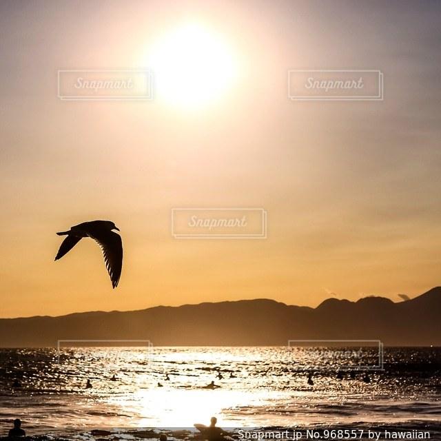 水の体に沈む夕日の写真・画像素材[968557]