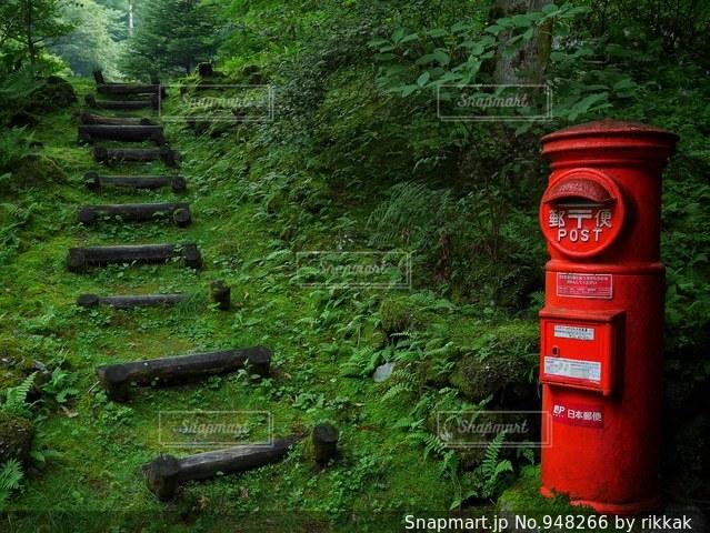 赤いベンチの写真・画像素材[948266]