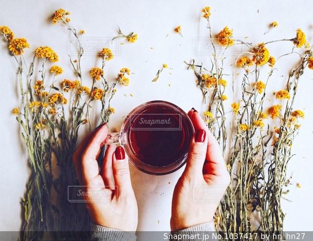 Spring Flower Tea Time♡の写真・画像素材[1037417]