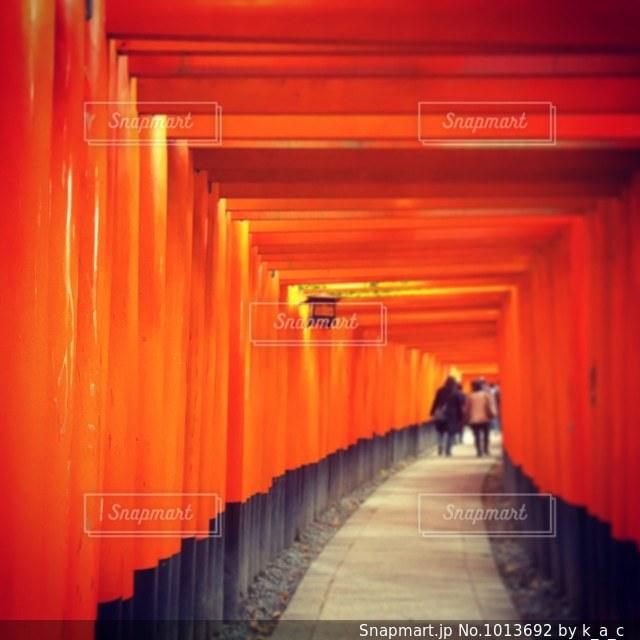 伏見稲荷大社のたくさんの⛩の写真・画像素材[1013692]