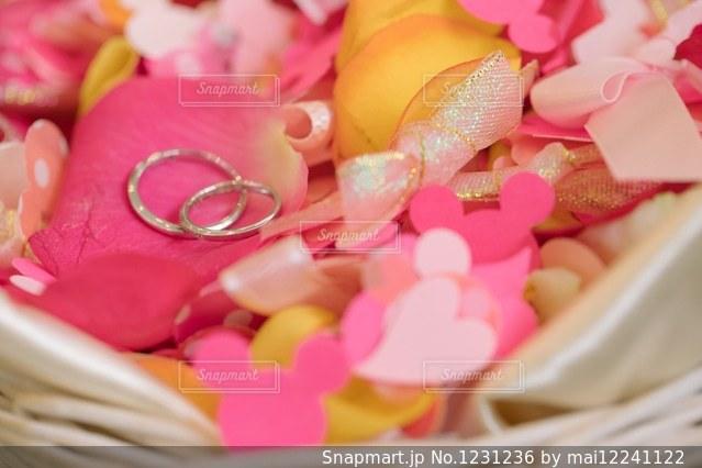近くに多くのピンクの花のアップの写真・画像素材[1231236]