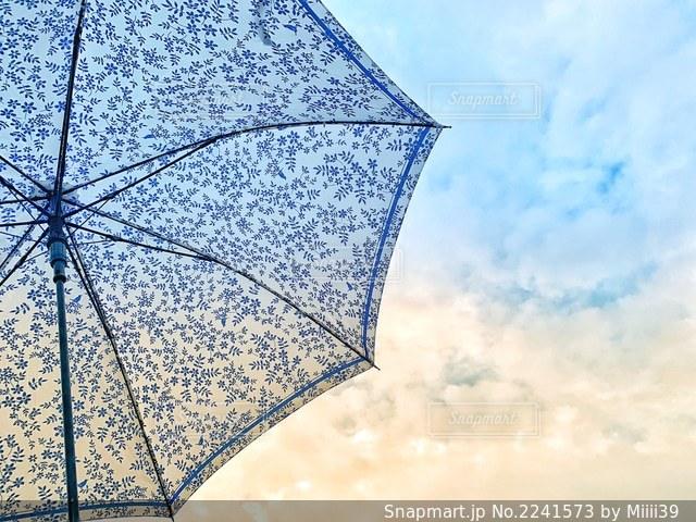 雨上がりの写真・画像素材[2241573]