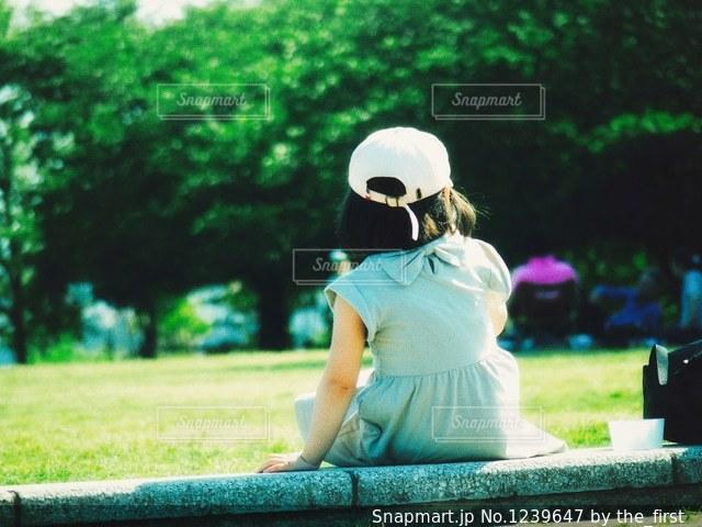 深き緑と黄ハイライトの写真・画像素材[1239647]