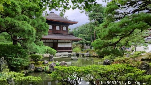 背景の水の庭の写真・画像素材[906305]