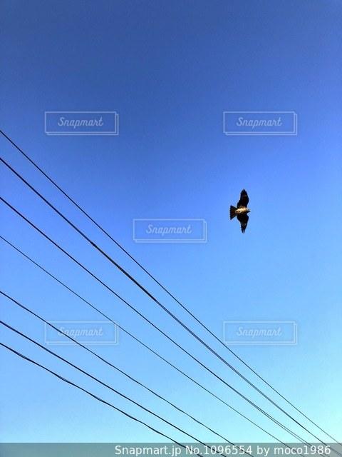 空の写真・画像素材[1096554]