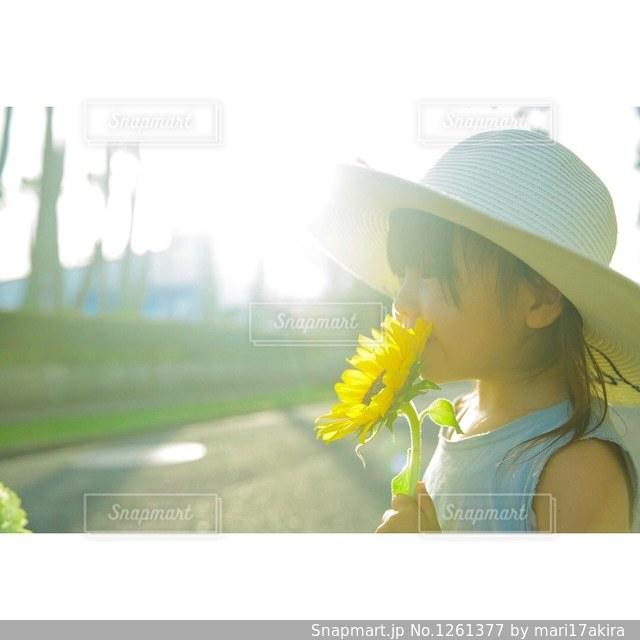 黄色い花🌼の写真・画像素材[1261377]