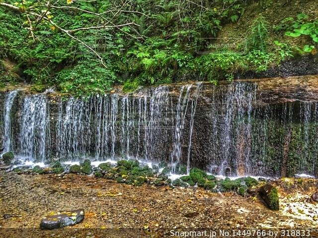 滝の写真・画像素材[1449766]