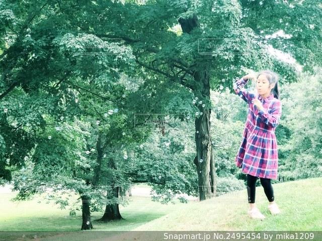 シャボン玉遊びする女の子と自然の写真・画像素材[2495454]