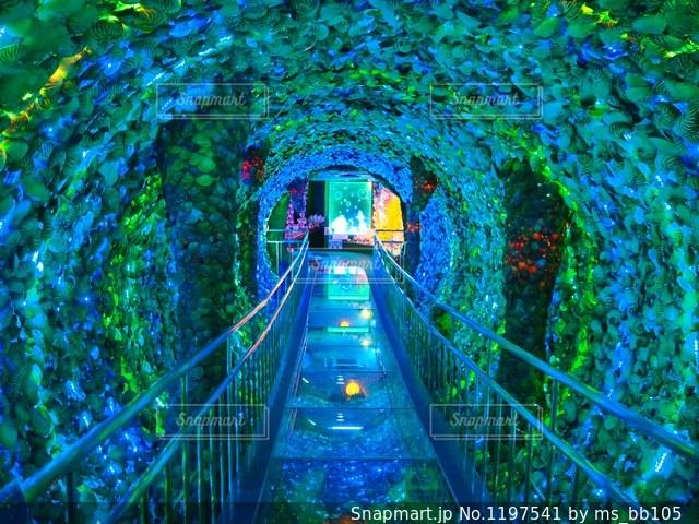 近くの橋の上の写真・画像素材[1197541]