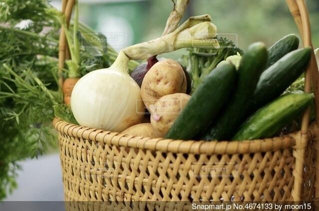 新鮮な野菜の写真・画像素材[4674133]